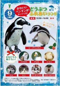 9日ペンギン
