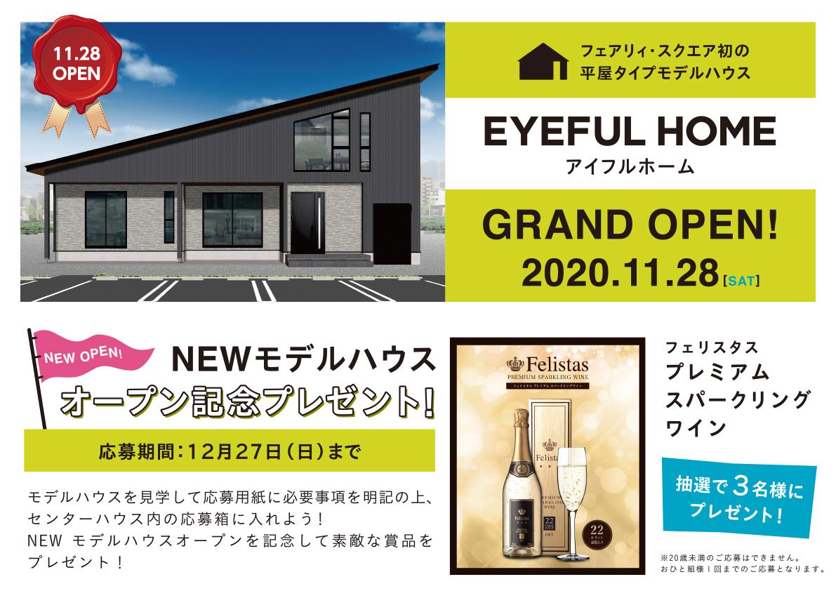 20201128_eyeful